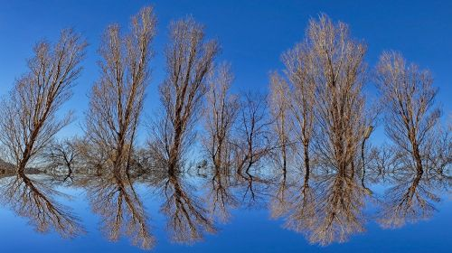 background mirror reflection