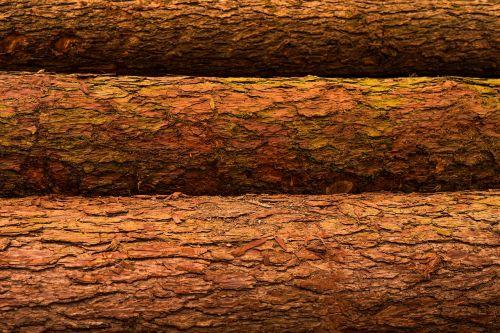 background surface wood