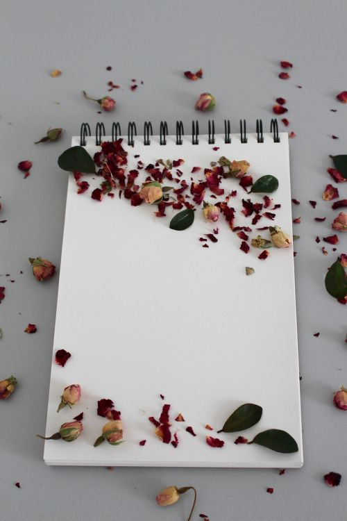 background notebook note