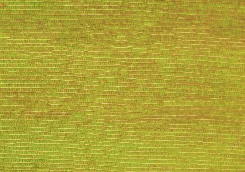 background structure fibers