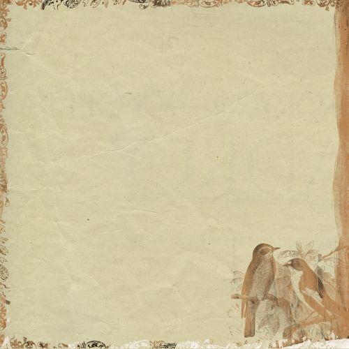 Background Scrapbook Bird Paper