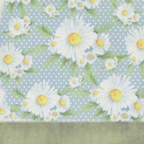 Background Scrapbook Daisy Flower