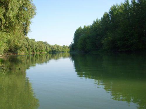 užtvankos,Danube,filialas,danube,vanduo,upė,gamta,srautas,slovakija,dabartinis,kraštovaizdis,miškas,vasara,upė danube,peizažas