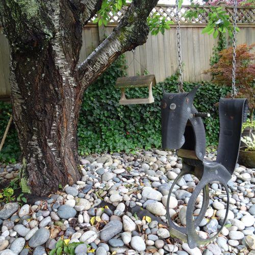 Backyard With A Swing