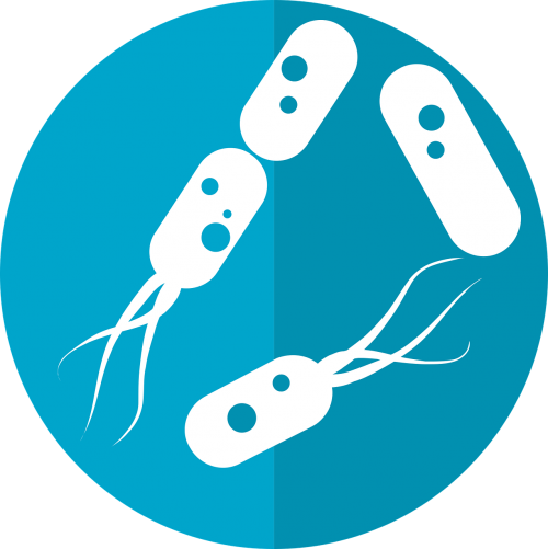 bacteria icon microbiome icon gut bacteria