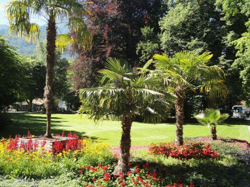bad reichenhall kurpark palm trees