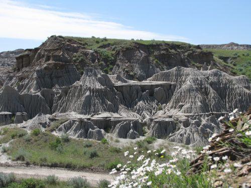 badlands fossils drumheller