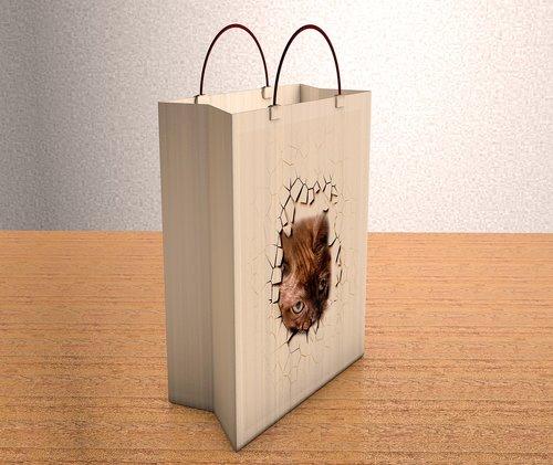 bag  paper  empty
