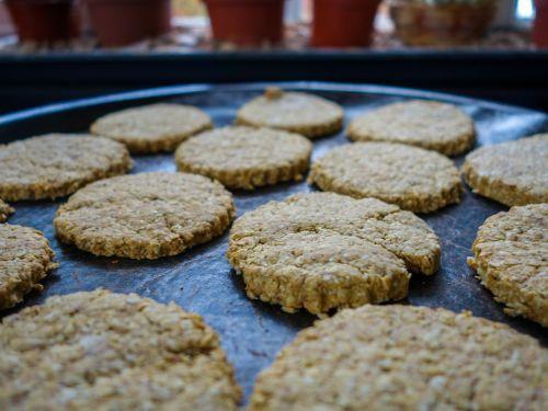 bakery biscuit oat