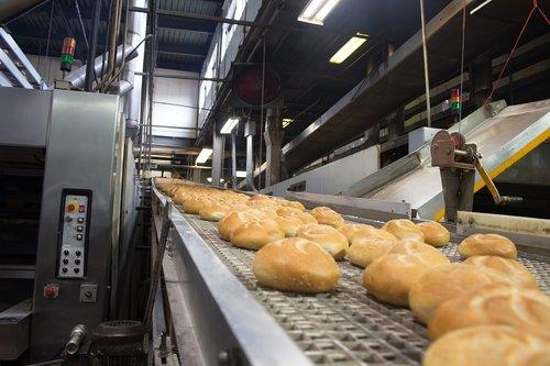 bakery  rolls  assembly line