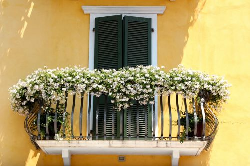 balcony flowers flower boxes