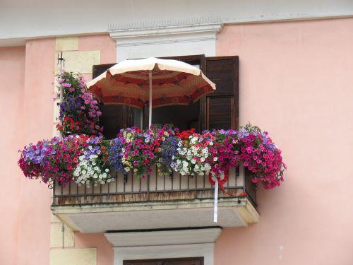 balcony flowers decorated door