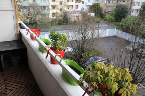 balcony flowerpot flower