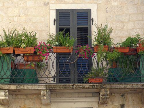 balcony window box terrace