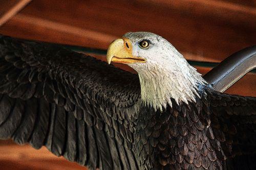 Bald Eagle Artifact