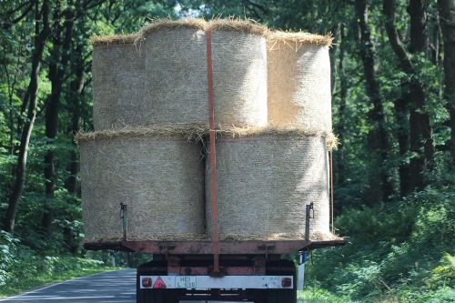 bale straw bales agriculture