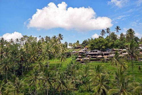 bali indonesia travel