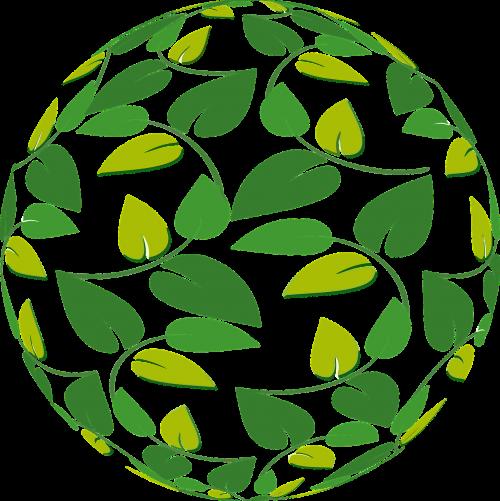 ball leaves aesthetic