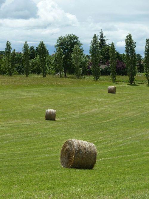 ball straw hay