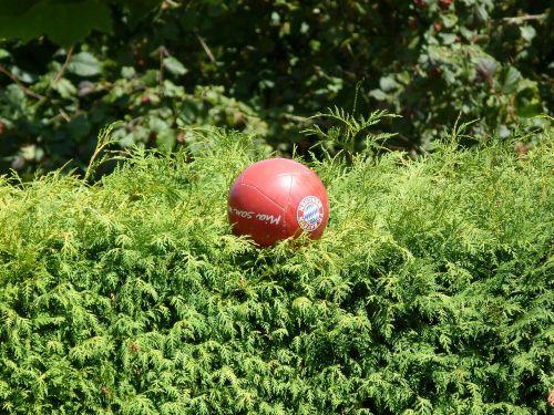 ball football red