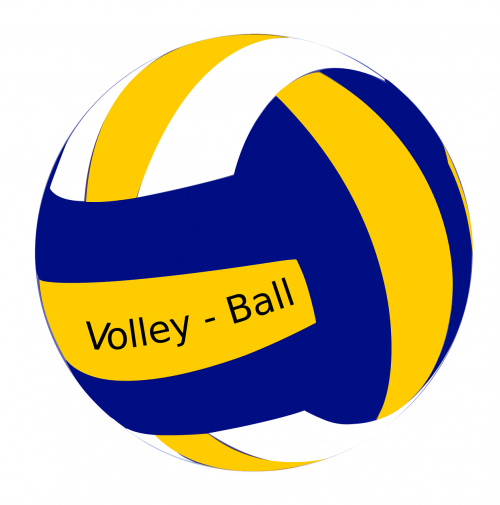 ball female volley