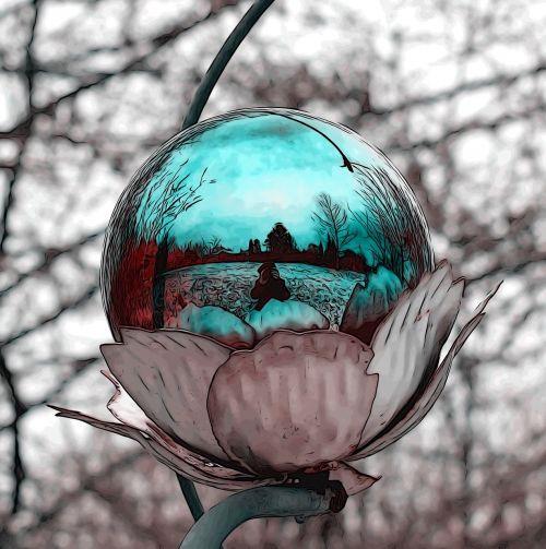 ball mirroring nature