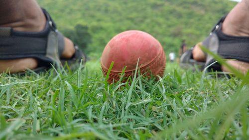 ball grass green