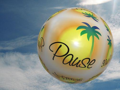 ball palm sun