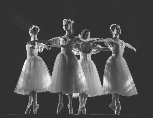 ballerina ballet ballet dancer