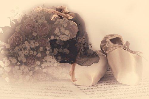 ballet  roses  elegance