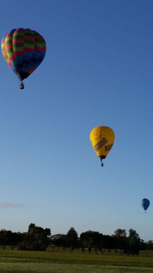 balloons hot air balloons sky