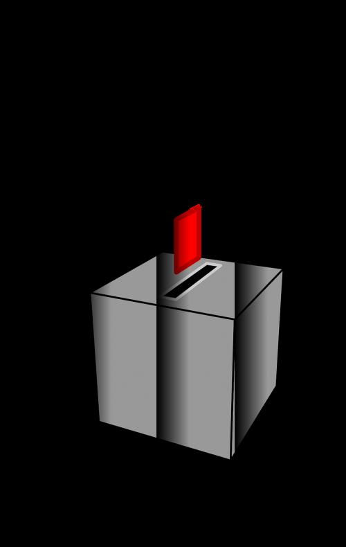 ballot vote choice