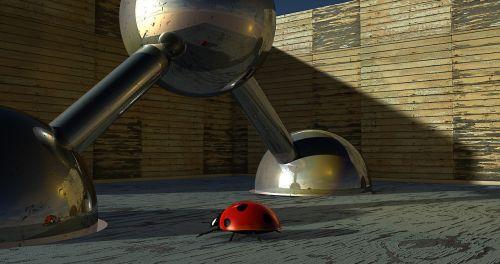 balls beetle ladybug