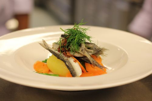 baltic herring food