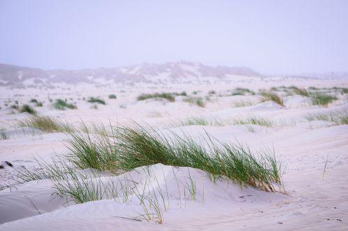baltrum morgenstimmung north sea