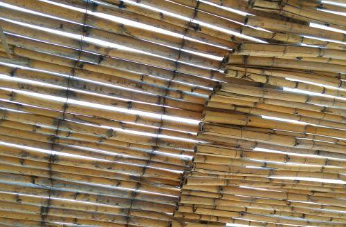bamboo canopy gazebo