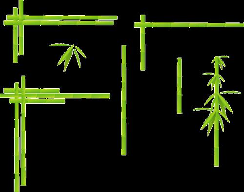 bamboo corner grass