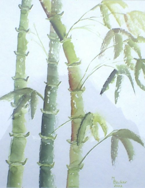 bamboo leaves plant