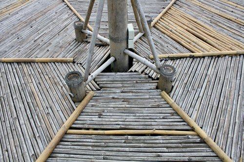bamboo  bamboo design  design