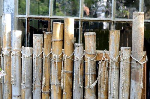 bamboo  fence  row
