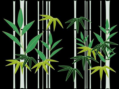 bamboo japan japanese style