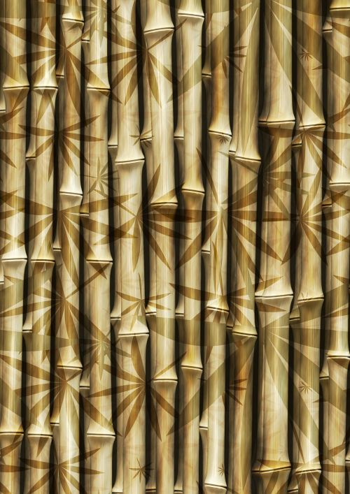 bamboo rods bamboo rods