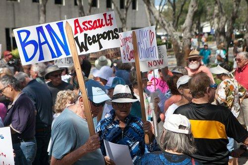 ban  assault weapons  gun