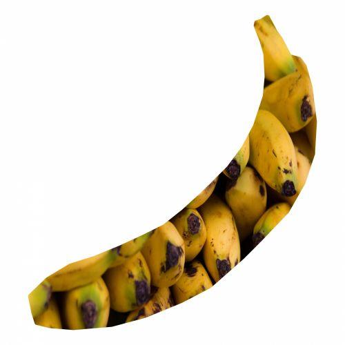 Banana With Bananas