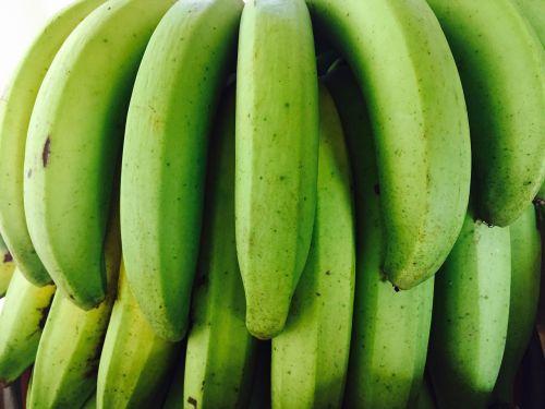 bananas green fruit