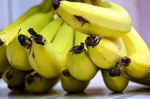 bananas  fruit  fruits