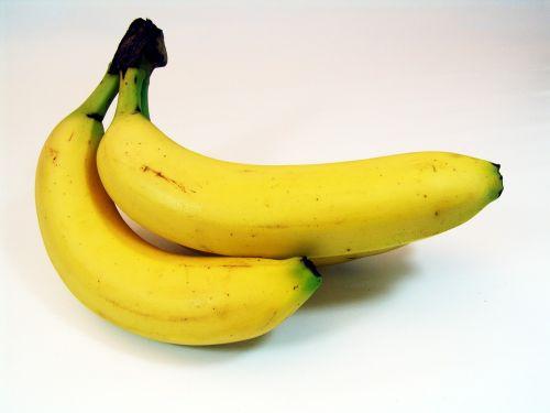 bananas fruit banana shrub