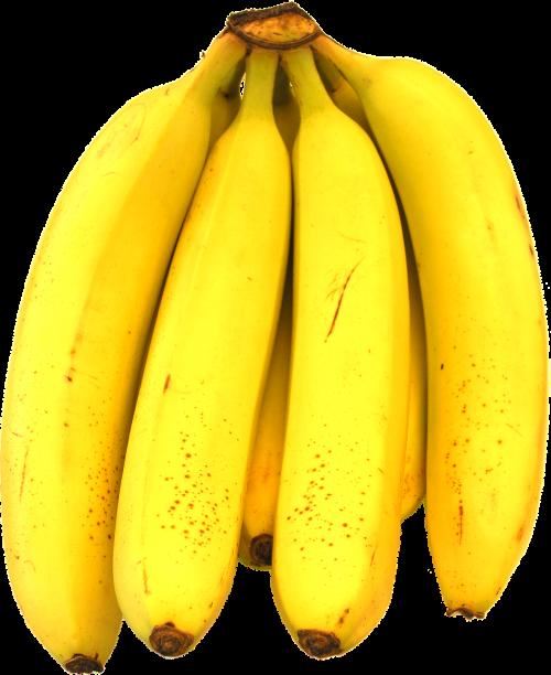 bananas ripe bunch