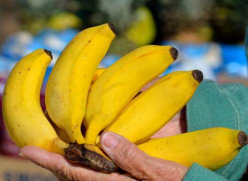 Bananas For Sale