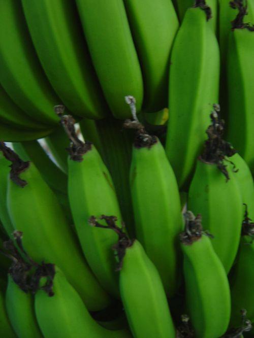 Bananas Close